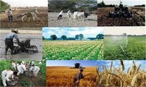 تامین مالی ۱۴۰۰میلیارد تومانی صندوق توسعه ملی برای صنعت و کشاورزی