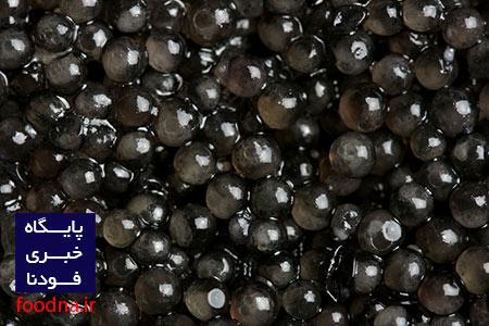 Caviar - خاویار - khavyar 2